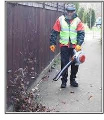leaf blower2