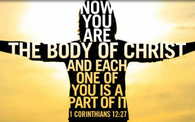 body of Christ each one a part of it