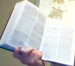 steve & the Bible