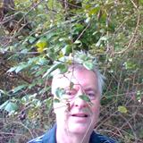 me in jungle