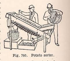 potato sorter