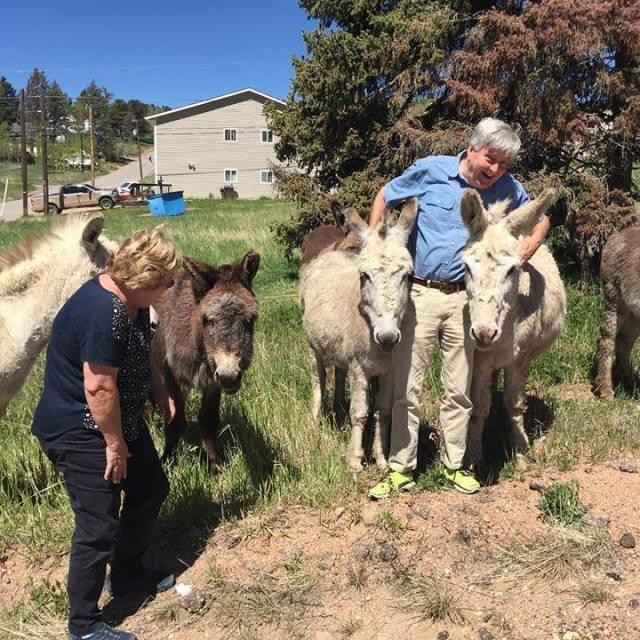 donkey me & ernie