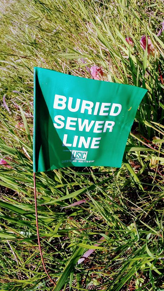 Burried sewer line